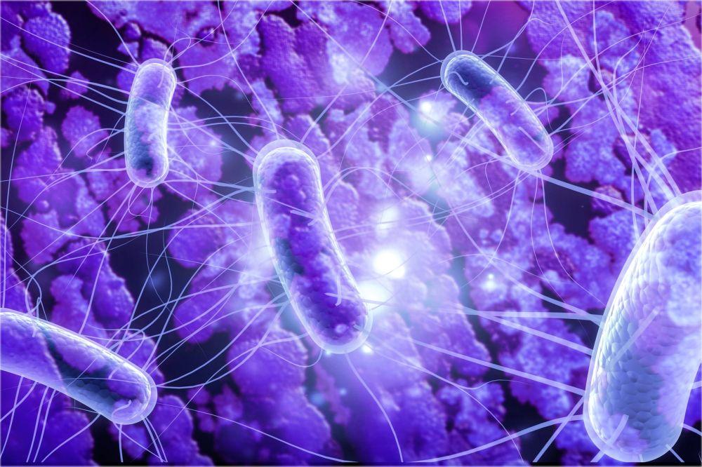 Epimedium - Badanie mikrobioty
